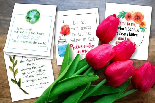 Cal Scripture Cards Blog Hero Image